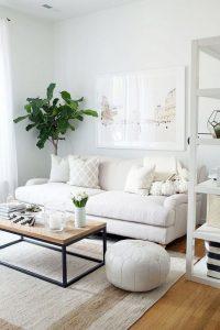 Plant Decor 2 200x300 - 10 Mẹo Thiết Kế Phòng Khách Đẹp