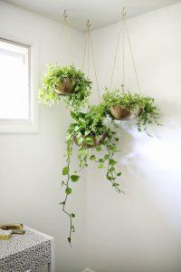 Plant Decor 3 200x300 - 10 Mẹo Thiết Kế Phòng Khách Đẹp